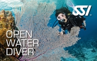SSI Open Water Diver VIP